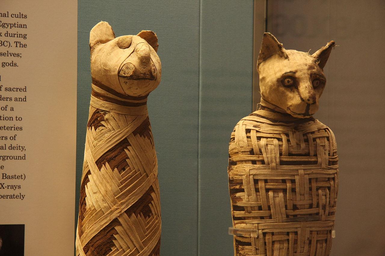 1280px-british_museum_egypt_mummies_of_animals_4423733728